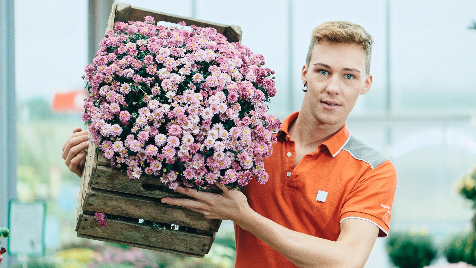 Markus Schneeberger Businessfotografie - bellaflora  MG 7950 DxO - Home